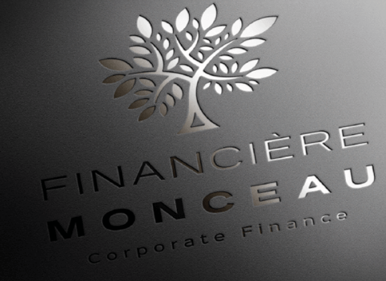 scenarii-site-web-financiere-monceau